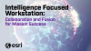 Intelligence Focused Workstation: Collaboration and Fusion for Mission Success