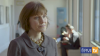 PMI TV: Administration and technology in pensions