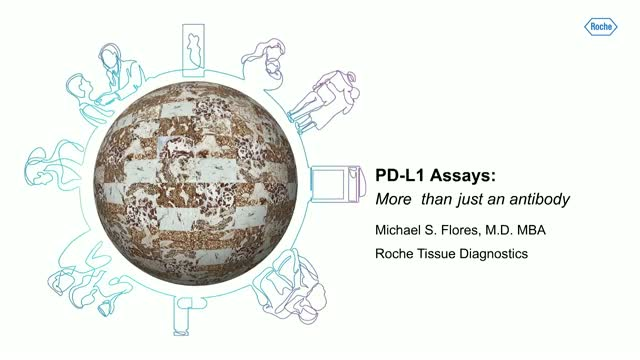 PD-L1 Assays – More than just an antibody