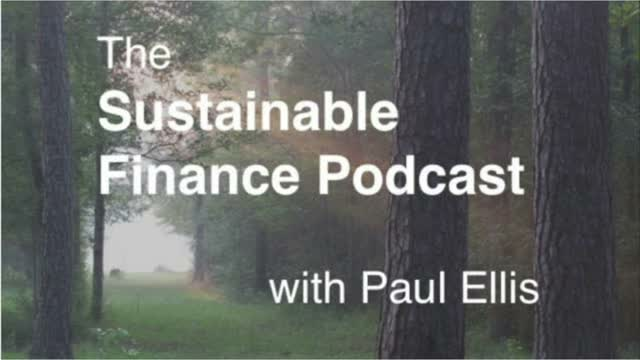 Paul Ellis Podcast Ep 13 - SDG #16: Peace, Justice and Strong Institutions