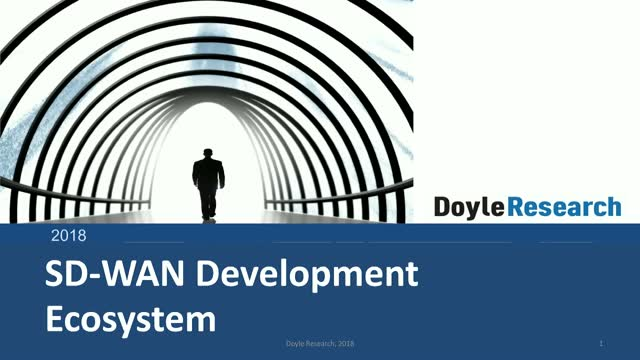 Benefits of a SD-WAN Development Ecosystem