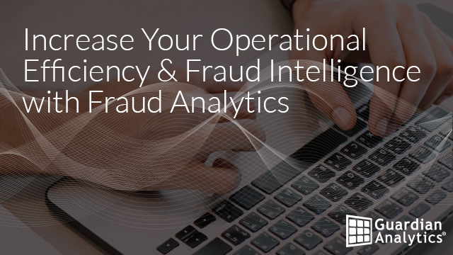Increase Your Operational Efficiency & Fraud Intelligence with Fraud Analytics
