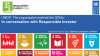 UNDP: The organisation behind the SDGs in conversation with Responsible Investor