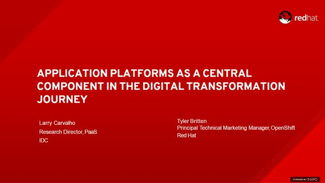 Application platforms as a central component in digital transformation journey
