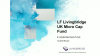 Q3 Overview - LF Livingbridge UK Micro Cap Fund