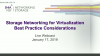 Virtualization and Storage Networking Best Practices