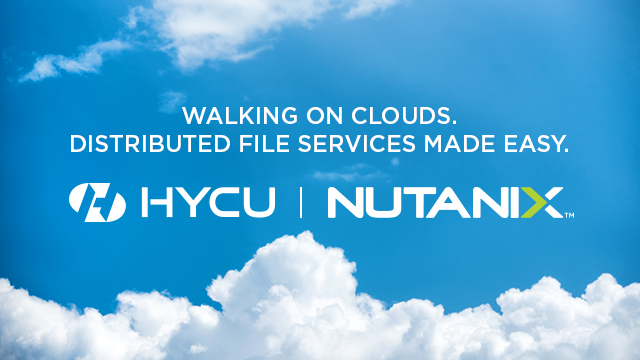 Walking on Clouds. Distributed File Services Made Easy