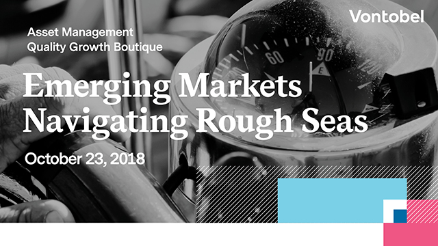 Emerging Markets – Navigating Rough Seas