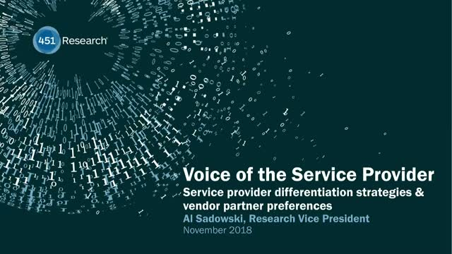 Service Provider Differentiation Strategies and Vendor Partner Preferences