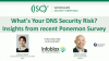 What's Your DNS Security Risk? Insights from recent Ponemon Survey