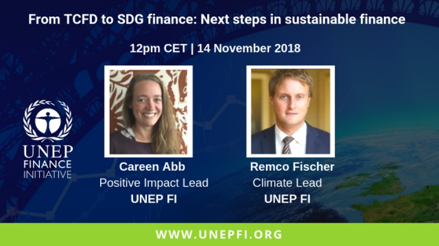 From TCFD to SDG Finance: Next Steps in Sustainable Finance