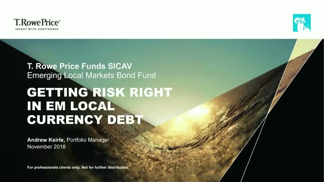 Getting Risk Right in EM Local Currency Debt