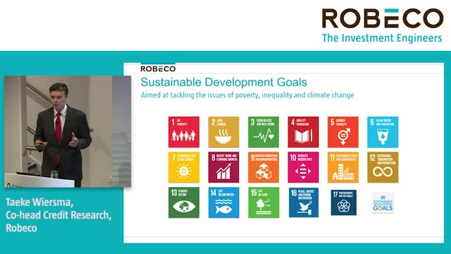 The UN SDGs – practical portfolio solutions