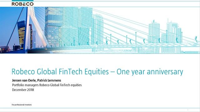Robeco Global Fintech Equities Fund: Celebrating a successful first year