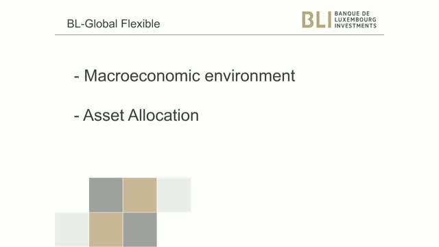 BL-Global Flexible