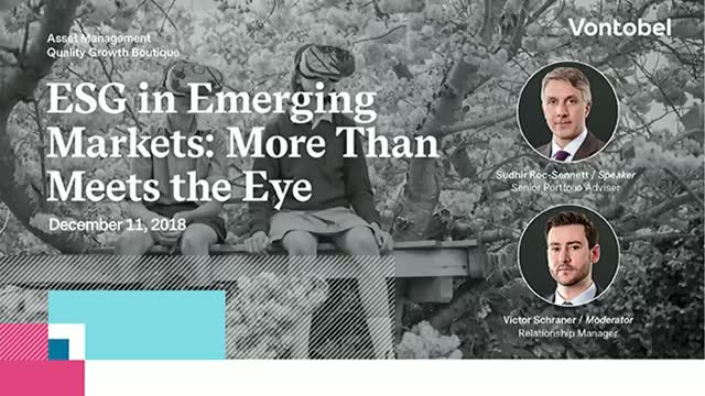 ESG in Emerging Markets: More Than Meets the Eye