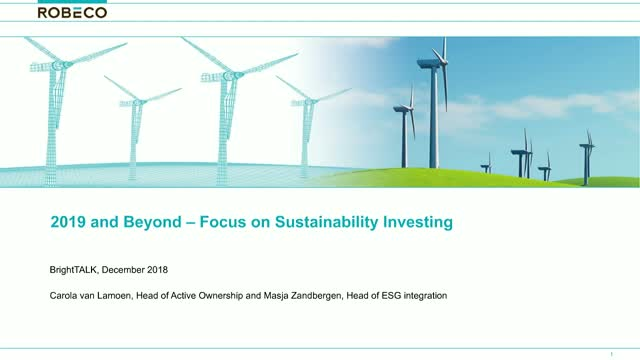 2019 And Beyond - Focus on Sustainability Investing