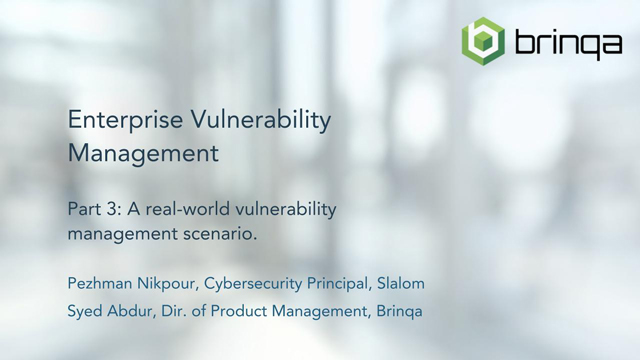 Brinqa Enterprise Vulnerability Management Webinar - Part 3 of 4