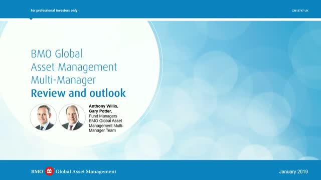 Multi-manager Review and Outlook Q1 2019 | BMO GAM