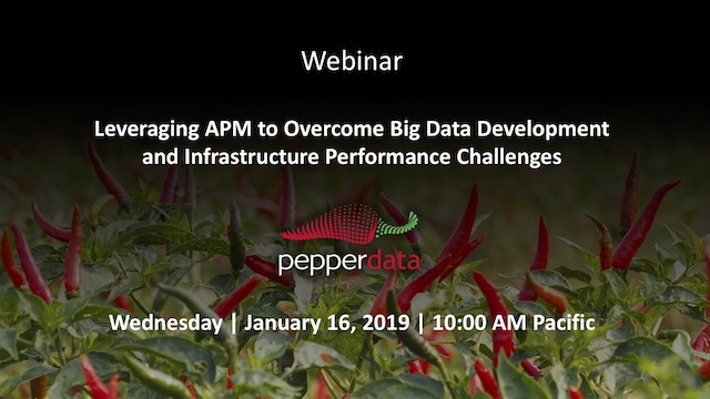 Leveraging APM to Overcome Big Data Challenges