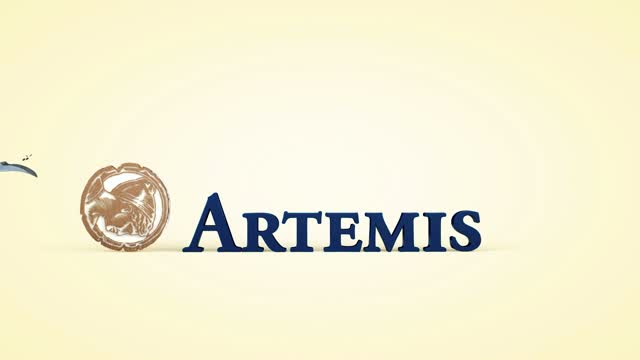 Artemis: Outlook for 2019