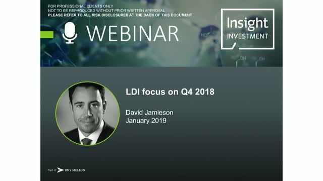 LDI Review and Outlook | January 2019
