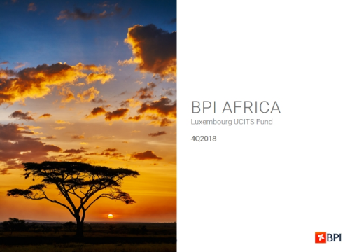 BPI Africa Fund - 2018 Overview