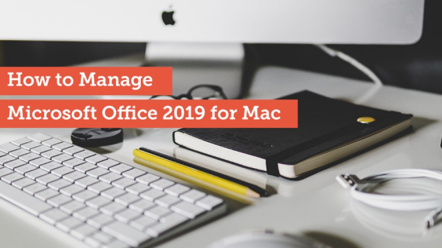 How to Manage Microsoft Office 2019 for Mac