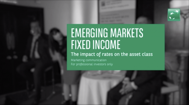 EM Fixed Income - The impact of rates on the asset class