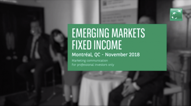 What is happening in emerging markets? - Montreal seminar, November 2018