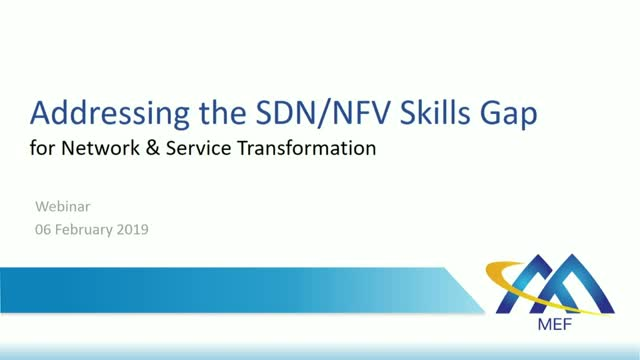 Addressing the SDN/NFV Skills Gap for Network & Service Transformation