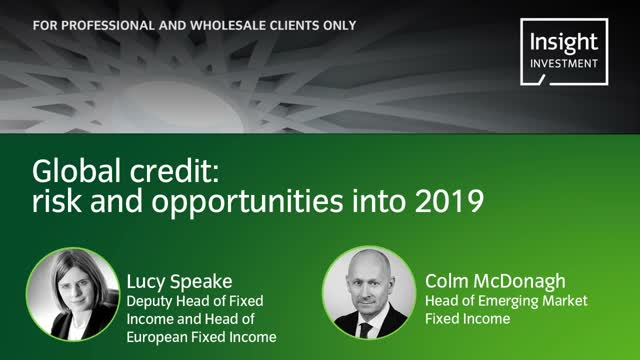 Annual Investment update 2019: Global credit opportunities