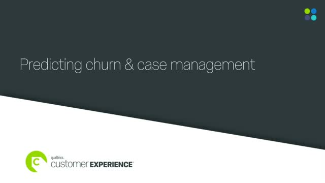 Predicting churn and case management