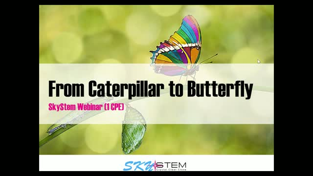 SkyStem: From Caterpillar to Butterfly