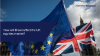 Live video: How will Brexit affect the UK equities market?