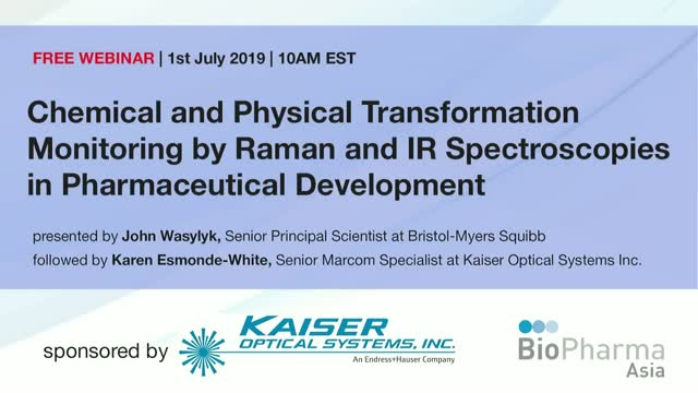 Chemical and Physical Transformation Monitoring by Raman and IR Spectroscopies