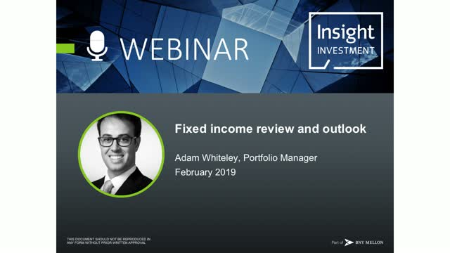 Fixed Income Review and Outlook | January 2019