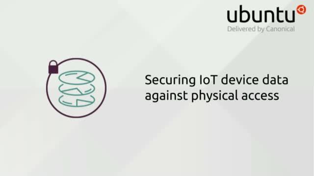 Securing IoT device data against physical access