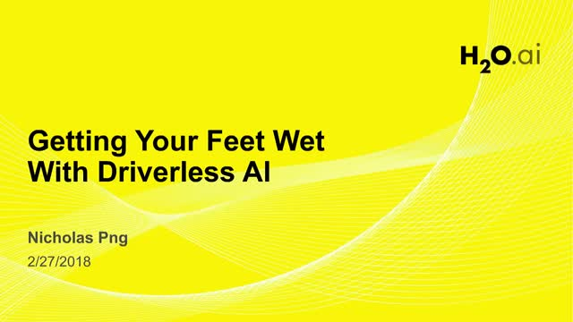 Get Your Feet Wet with H2O Driverless AI