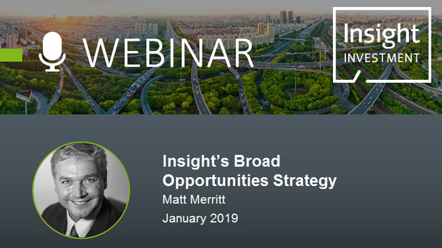 Insight's Broad Opportunities Strategy Review and Outlook | January 2019