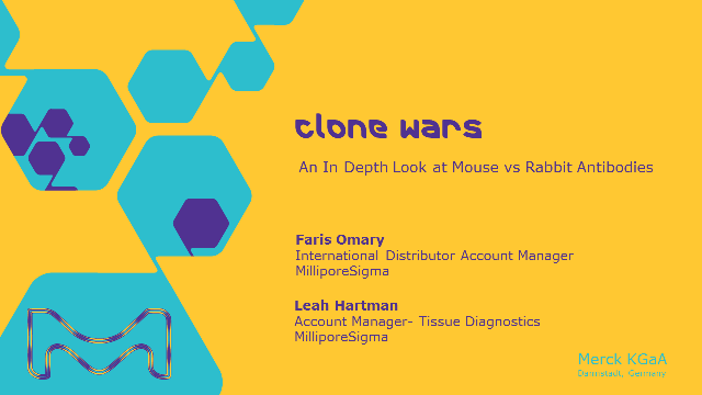 Clone Wars: An In Depth Look at Mouse vs Rabbit Antibodies