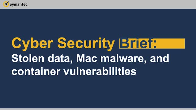Cyber Security Brief: Stolen data, Mac malware, and container vulnerabilities