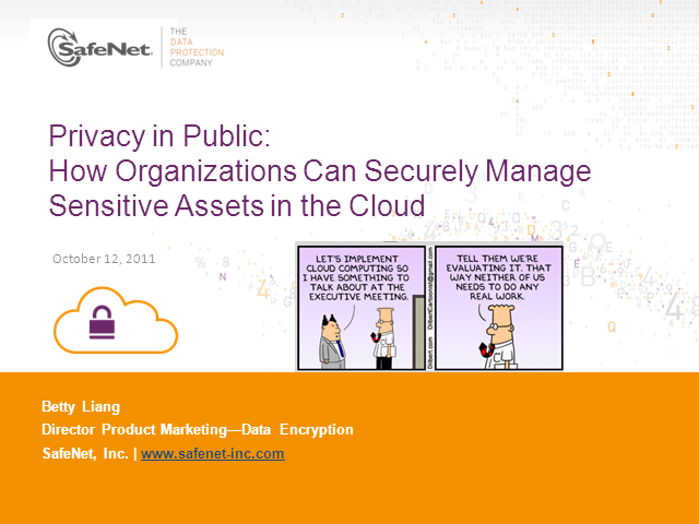 Privacy in Public: How Organizations are Securely Mng Sensitive Assets in Cloud