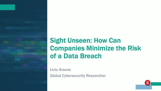 Sight Unseen: How Can Companies Minimize the Risk of a Data Breach