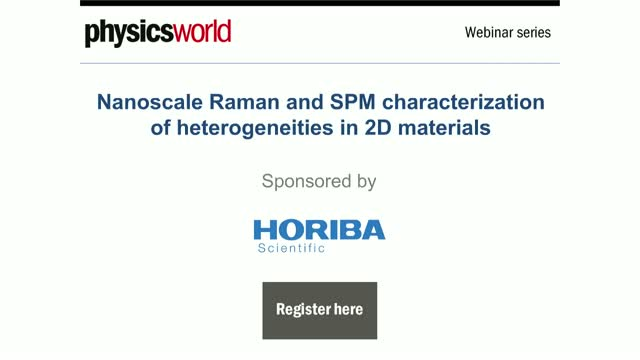 Nanoscale Raman and SPM characterization of heterogeneities in 2D materials