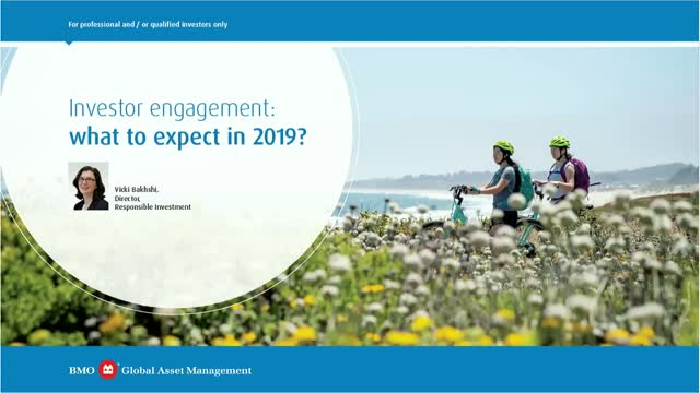Investor engagement: what to expect in 2019?
