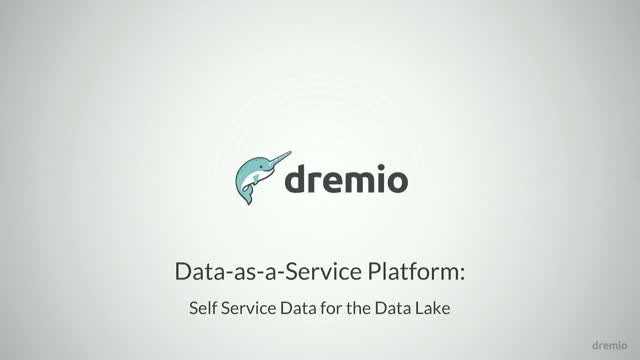 Data-as-a-Service on the Data Lake