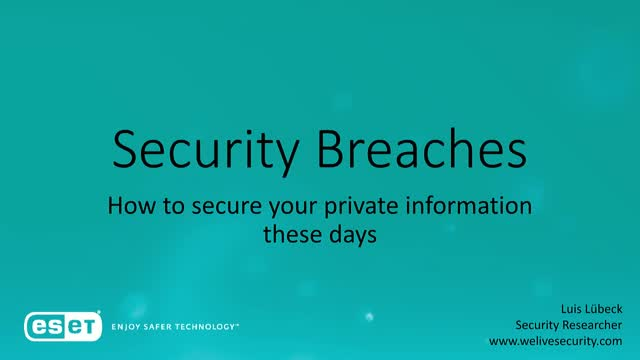 Data Breaches – How to secure your private information