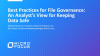 Best Practices for File Governance: An Analyst's View for Keeping Data Safe