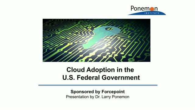 Cloud Adoption in the U.S. Federal Government